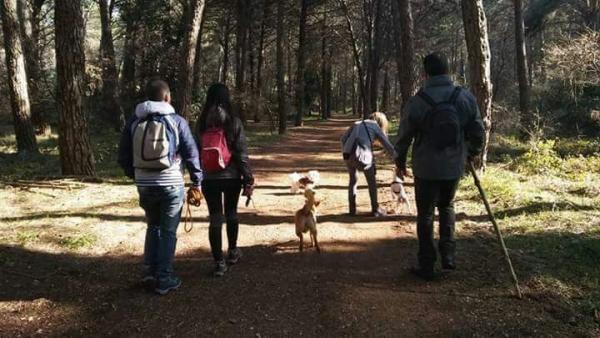 Dog-trekking sul Gargano, proposte per un territorio sempre più a misura di animali