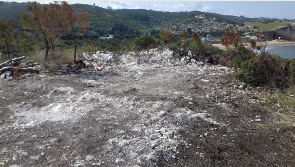 Wwf/ Abusivismo sul Gargano: nessuna solidarietà da amministratori e dal Parco al giornalista di Report