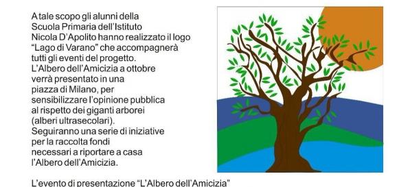 Cagnano Varano/Ritorna da Milano l'ulivo simbolo della fratellanza