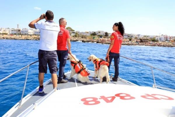 Vieste - Unità cinofile da salvataggio in acqua: al via i corsi per i Cani Bagnino