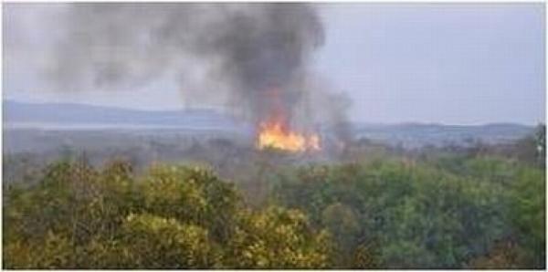Incendi: sul Gargano si rafforza il servizio dei Carabinieri Forestali