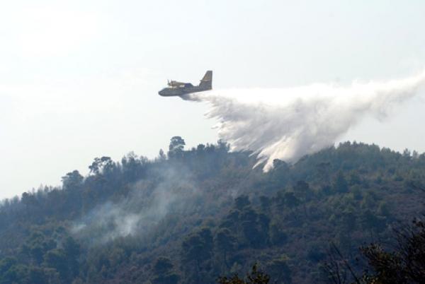 In fiamme boschi e macchia a Carpino, Cagnano Varano e Mattinata
