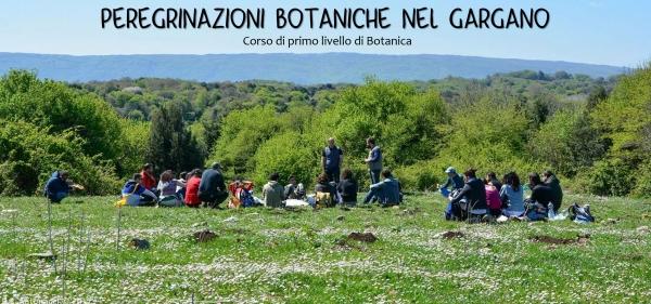 Tornano le Peregrinazioni botaniche, camminate alla scoperta del Gargano