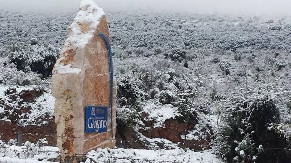 Neve di gennaio/ Il Governo dichiara lo stato emergenza richiesto dalla Regione Puglia