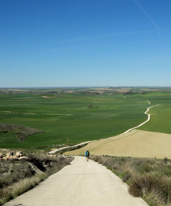 Vieste-Santiago de Compostella- via Francigena-Vieste/ L'esperienza indimenticabile di Viviana dopo 2000 Km a piedi.