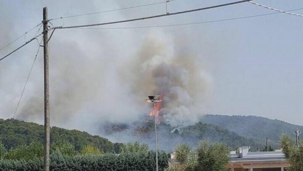 10 anni dopo a Peschici ancora in fiamme diversi ettari di macchia mediterranea