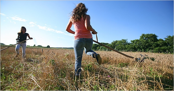 Puglia/ Sono in aumento i giovani agricoltori. Le imprese «under 35» crescono del 6,6%. La ricerca è della Coldiretti.